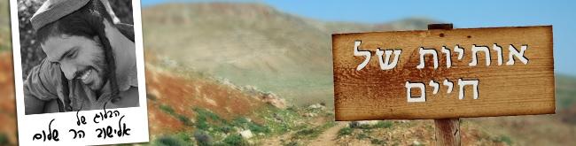 אלישוב הר-שלום